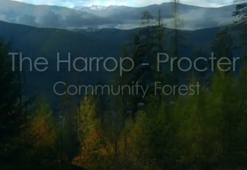 From the Archives: BC Forestry Co-ops