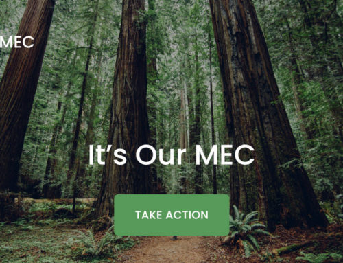 SaveMEC Campaign Goes To Court/Mobilizing for the Climate Emergency w Seth Klein