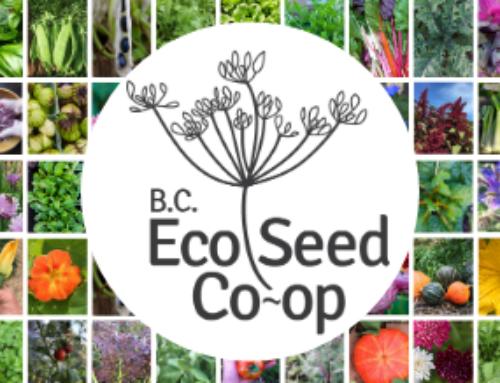 B.C. Eco Seed Co-op/VALU Co-op